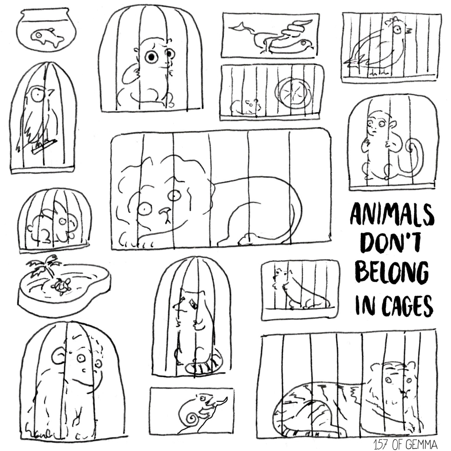 20160414_animals dont belong in cages.jpg