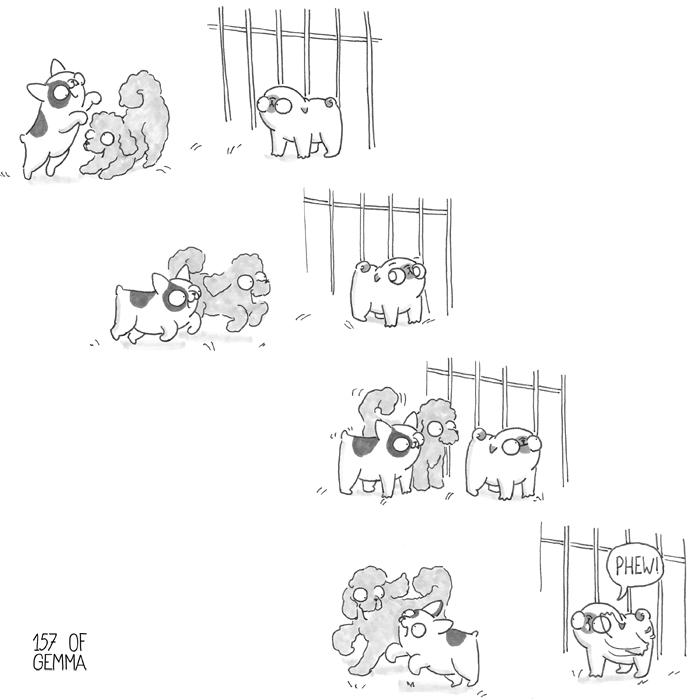 20170804_dog park_LR.jpg