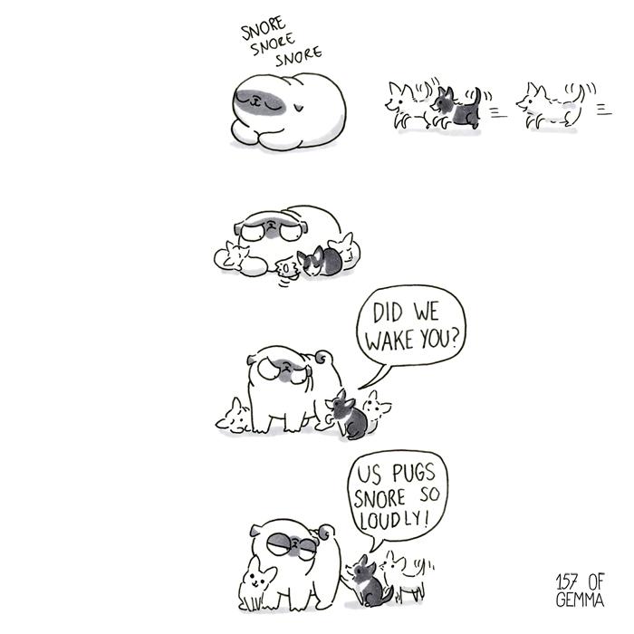 20170110_us pugs_LR.jpg