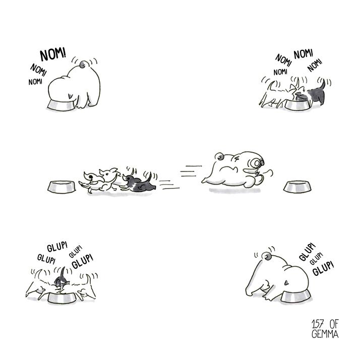 20180217_feeding 4 dogs_LR.jpg